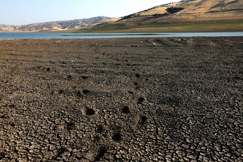 The San Luis Reservoir was only 10% full, its lowest level in 27 years, as of last week.
