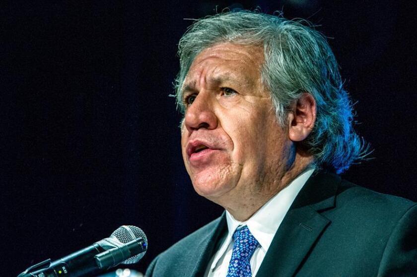 """El secretario general de la OEA, Luis Almagro, dijo hoy que mantener sin cambios la misión anticorrupción en Honduras habría supuesto """"mantener la impunidad como está"""", e insistió en que la renuncia de su jefe, Juan Jiménez, permitirá lograr avances en la tarea de forma """"eficiente y profesional"""". EFE/ARCHIVO"""