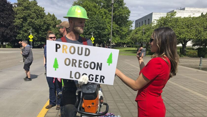 FILE - In this Thursday, June 20, 2019, file photo, a TV reporter interviews self-employed logger Br