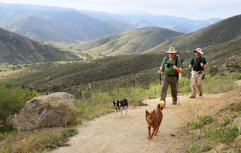 Hiking up the Cedar Creek Falls Trail in the early morning are friends Bob Van Gorder, left, and Fred Salzer, at right, with their dogs Ruca, left, and Brady, at right.