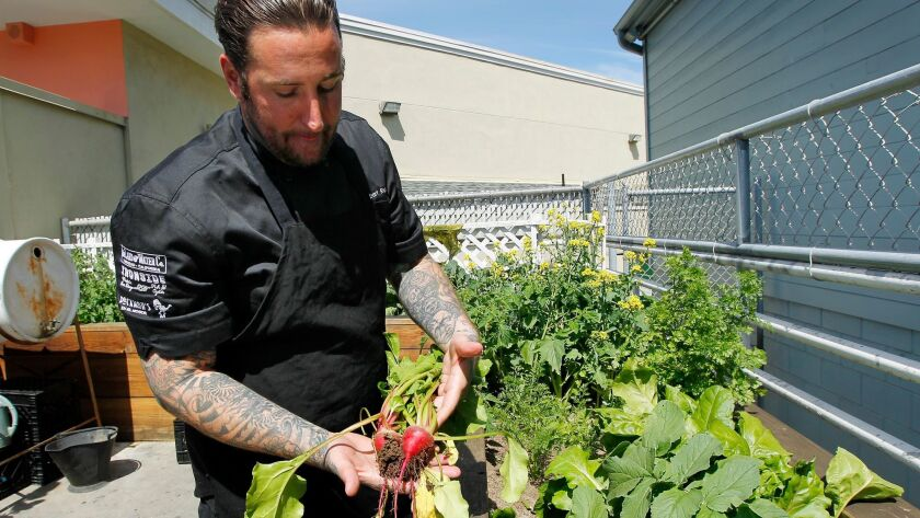 The Land & Water Company owner/chef Rob Ruiz pulls beets for a gazpacho dish from his onsite vegetable and herb garden this past April.