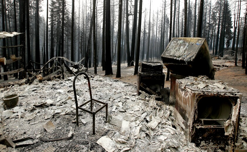 A chair stands in a charred home surrounded by burnt trees