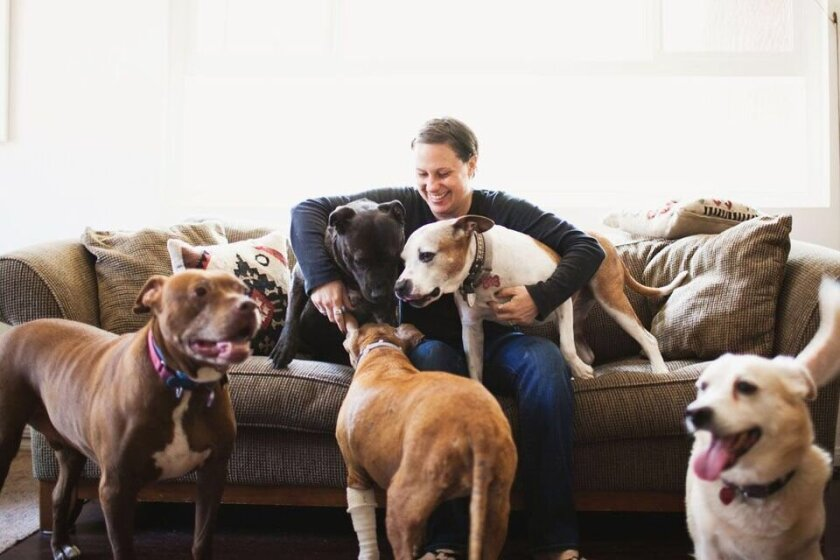 Karma Rescue founder Rande Levine with a few canine companions. The organization is having a fundraiser on Sept. 12 in Del Mar. Photo by Maharaj Photography