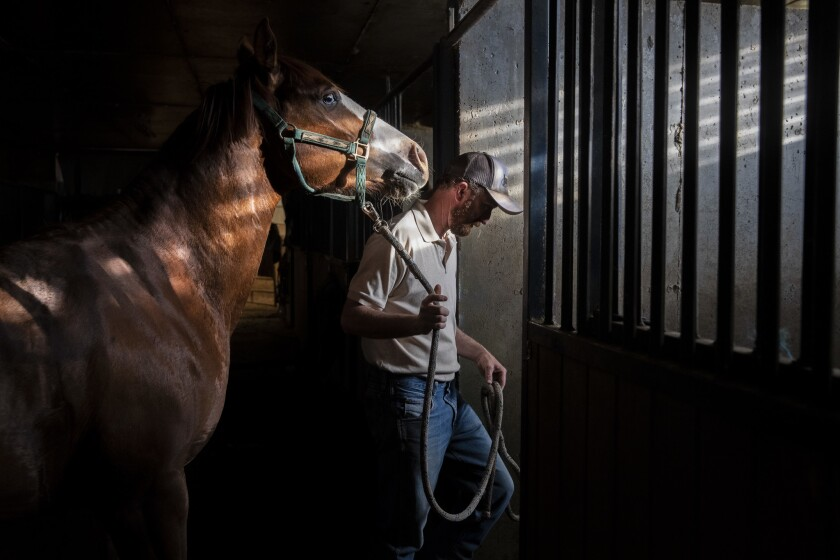 BENJAMIN, UTAH -- TUESDAY, JUNE 4, 2019: Nathan Ivie leads a horse back to its stall in the stables