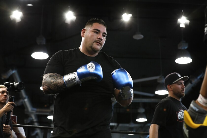 Imperial's Andy Ruiz, the heavyweight boxing champion of the world, gets ready to work out on Saturday at The Boxing Club, in East Village. He defends his world title in December in Saudi Arabia against Anthony Joshua.