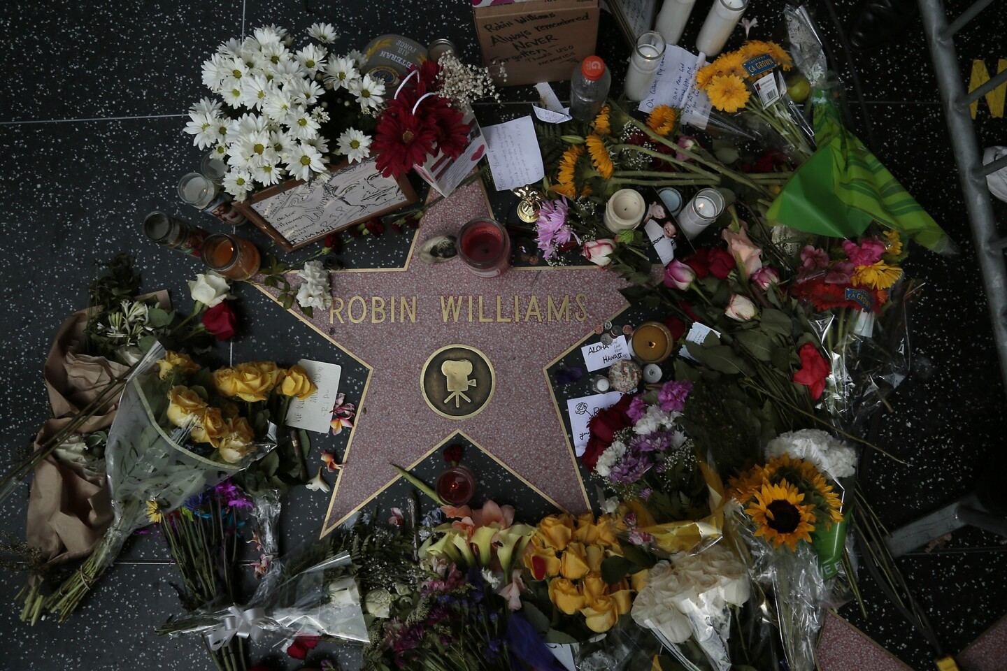 Flowers and memorabilia are piled on Robin Williams' Hollywood Walk of Fame star, a day after the actor was found dead from an apparent suicide.