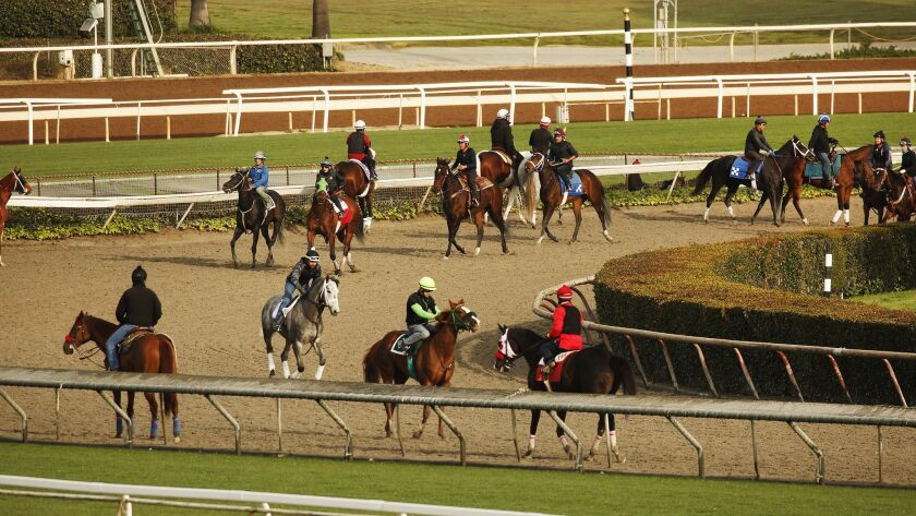ARCADIA, CA - MARCH 11, 2019 Riders, jockeys and horses return to training on the Santa Anita Park