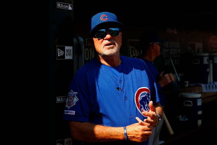 Will former Chicago Cubs manager Joe Maddon be the next manager of the Angels?