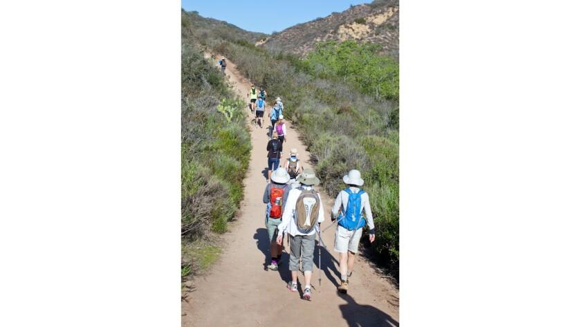 Hiking in Laguna Canyon.