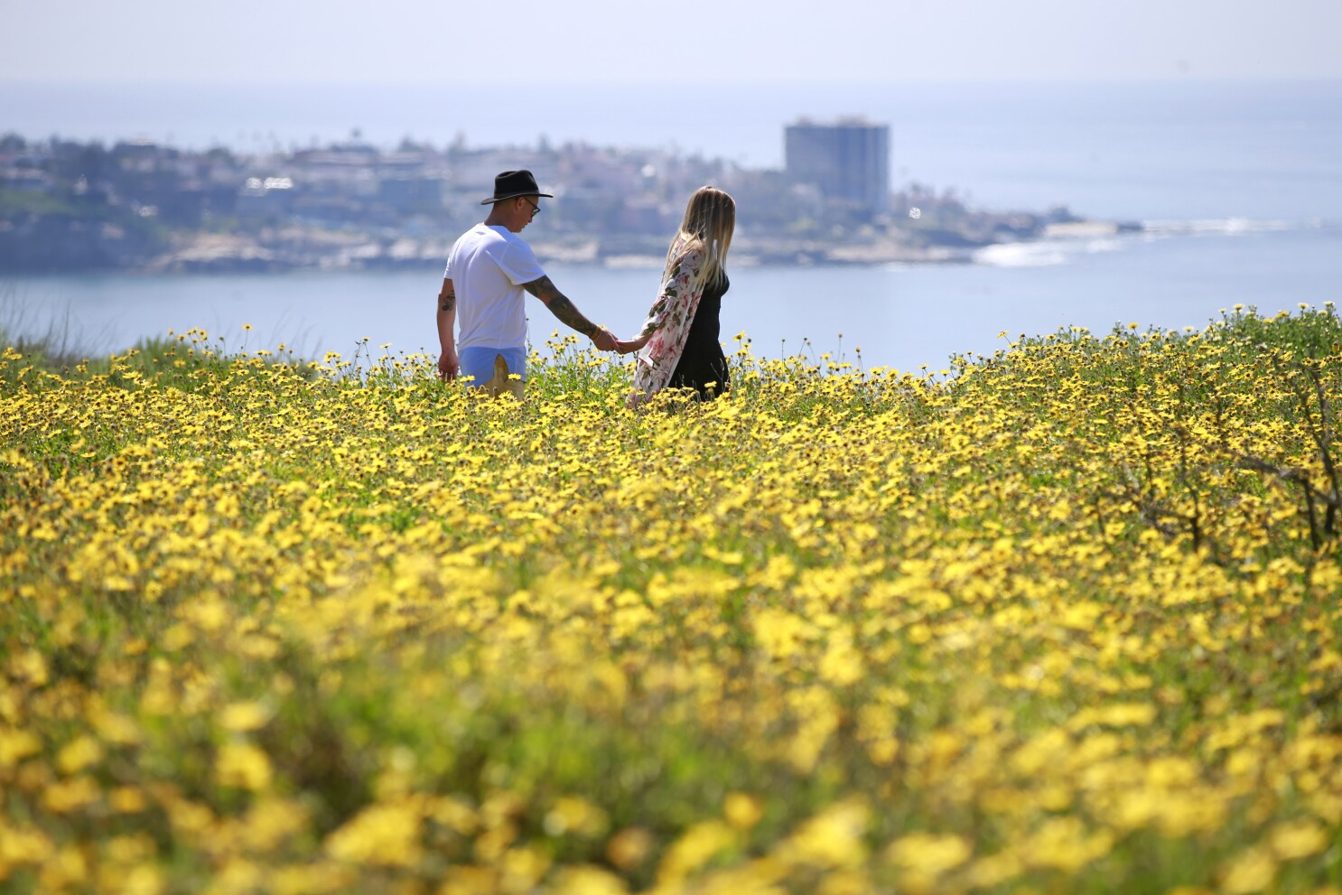 March blossomed across San Diego County - The San Diego