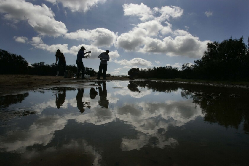 Researchers from the University of San Diego were reflected in a vernal pool in Torrey Hills where they are cataloging the creatures that live in the pools.