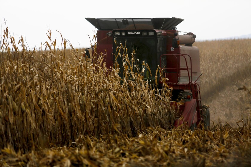 FILE - In this Dec. 4, 2017, file photo, a farmer harvests crops near Sinsinawa Mound in Wisconsin. A federal judge has halted a loan forgiveness program for farmers of color in response to a lawsuit alleging the program discriminates against white farmers. U.S. District Judge William Griesbach in Milwaukee issued a temporary restraining order Thursday, June 10, 2021, suspending the program for socially disadvantaged farmers and ranchers, the Milwaukee Journal Sentinel reported. (Eileen Meslar/Telegraph Herald via AP, File)