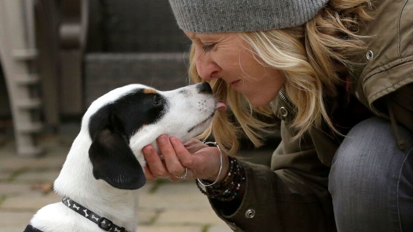 Humans really do understand their dogs — at least some of the time. Pet owners and women were particularly good at interpreting growls, a new study finds.