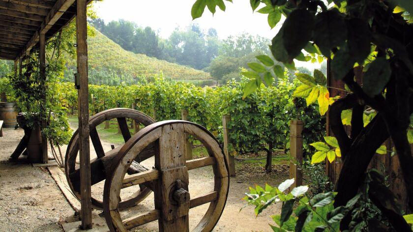 Moraga Estate, not far from the 405 Freeway, is Rupert Murdoch's Bel-Air vineyard.