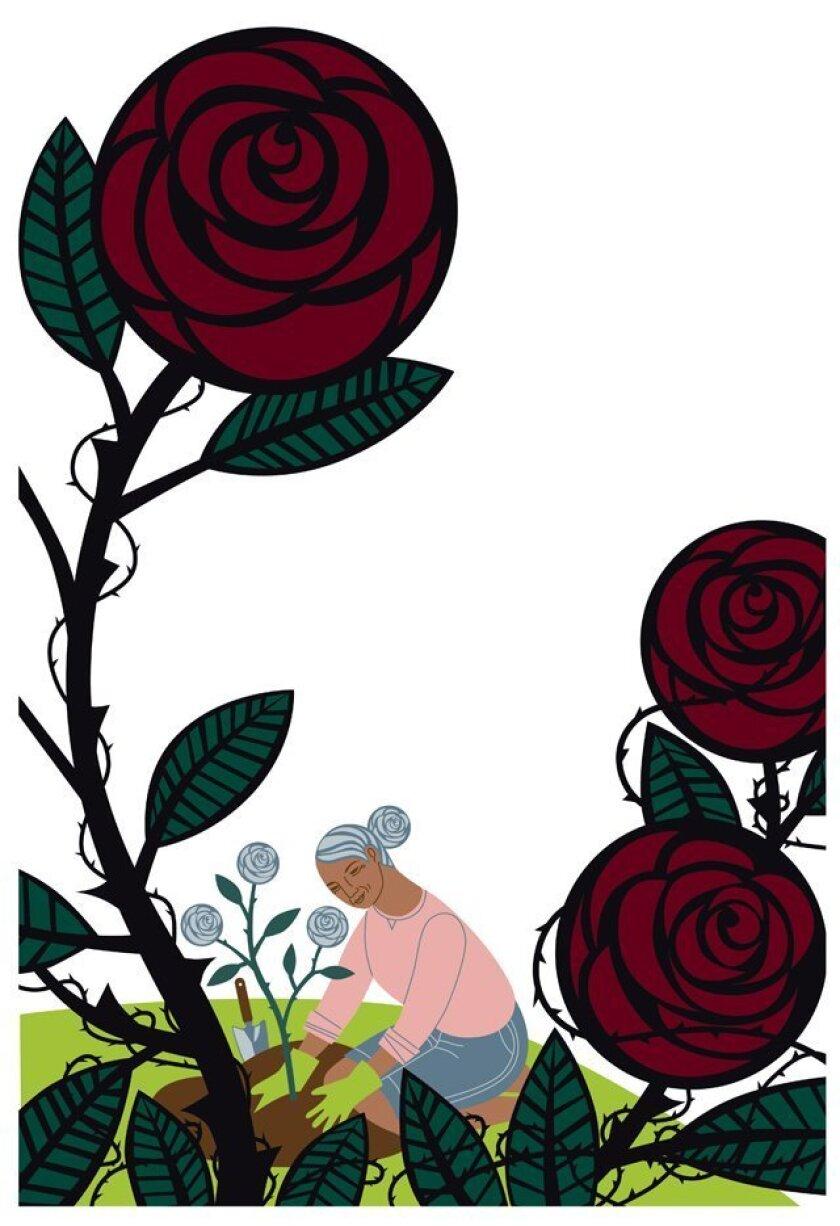 Illustration by CRISTINA MARTINEZ BYVIK