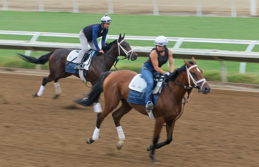 """Exercise riders for horse trainer Michael McCarthy give their horses a morning workout on the Del Mar Racetrack. At left is Ike Muniz on horse named """"Surface"""" and at right is Nikki Diodoro on horse named """"Convincingly."""""""