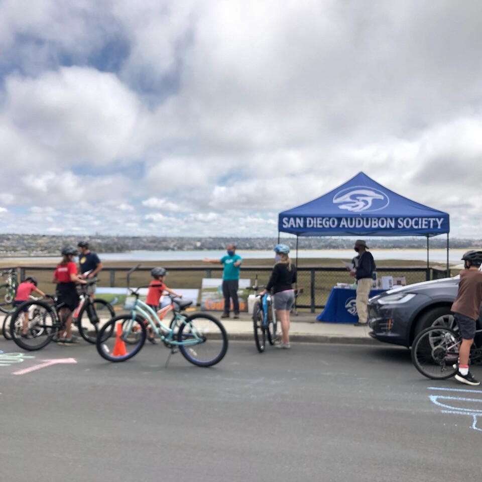 The San Diego Audubon Society pit stop at the Kendall-Frost Marsh for the Tour de PB on March 20