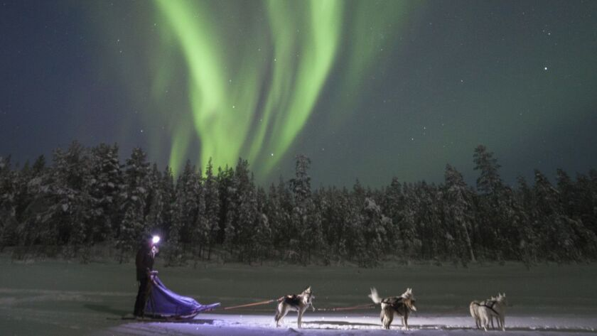 Dogsledding under an aurora borealis near Kiruna, Sweden