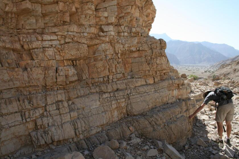 250-million-year-old rocks in the United Arab Emirates reveal that ocean acidification helped lead to the worst extinction event in history, scientists say.