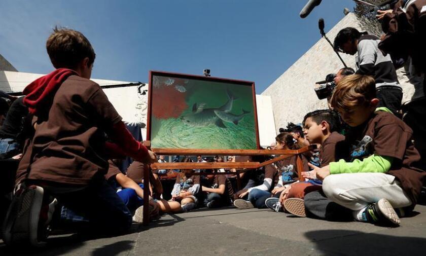 Niños participan el sábado 17 de febrero de 2018, durante una peregrinación celebrada en Ciudad de México (México). Diversas organizaciones civiles, artistas e investigadores hacen un llamado urgente de conciencia por la conservación de ese cetáceo que está a punto de desaparecer. EFE