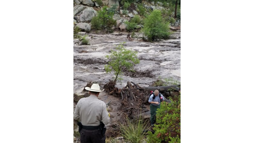 Rescuers in the Tonto National Forest.