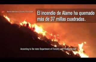 Incendios forestales en California obligan a casi 8.000 personas a evacuar