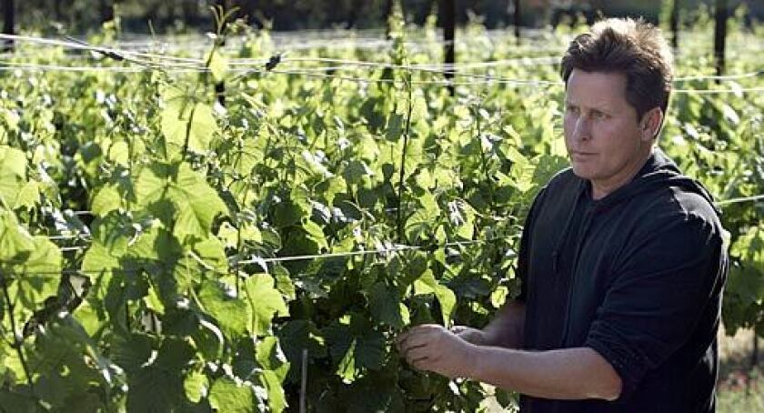 TRYING HIS HAND: Actor and director Emilio Estevez's half-acre Pinot Noir vineyard surrounds his Malibu home. Total vineyard acreage in the Malibu area is small, with about 150 acres, planted to wine grapes, but the number of vineyards in and around Malibu has more than quadrupled in five years.