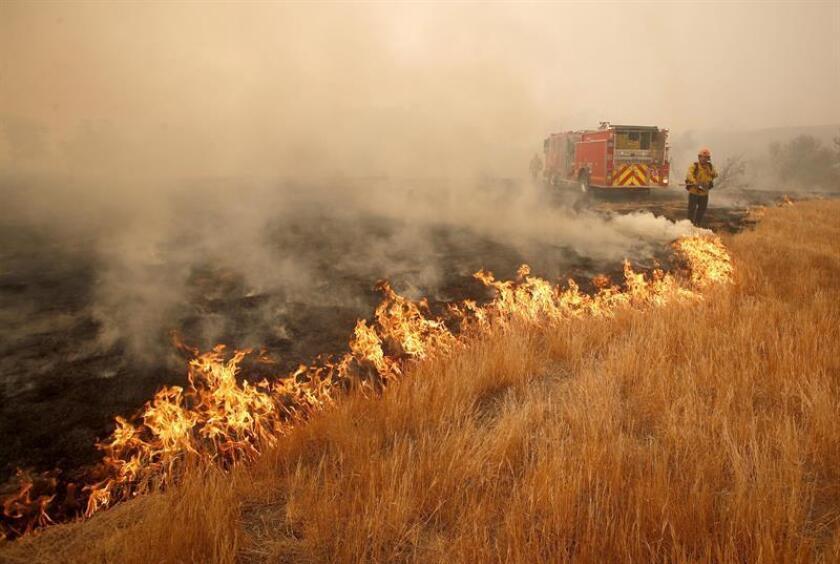 Firefighters battle the Woolsey Fire near Malibu, California, Nov. 10, 2018. EPA-EFE/Mike Nelson