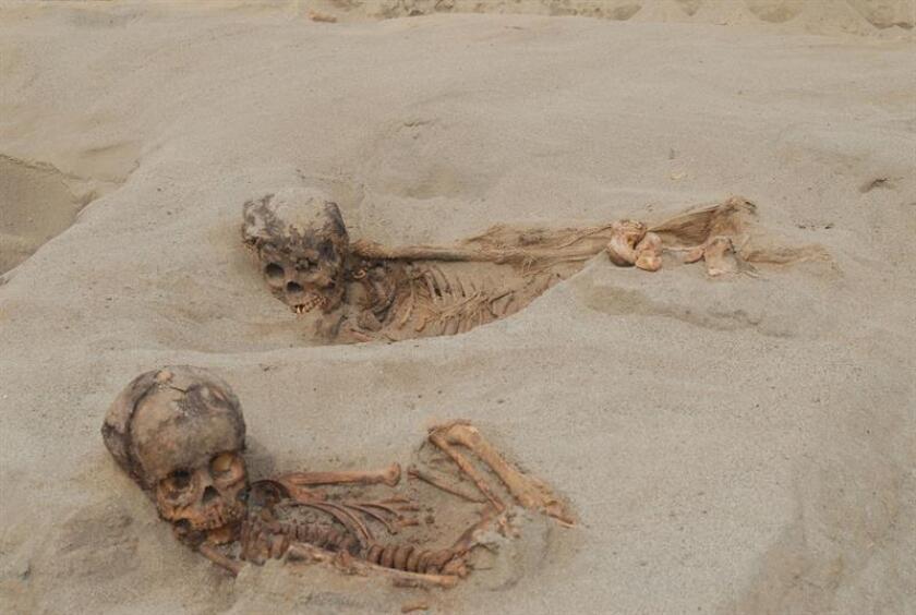 Fotografía cedida por John Verano de la Universidad de Tulane donde aparecen dos niños momificados encontrados junto a casi 140 esqueletos humanos y más de 200 de llamas (aunque podrían ser también alpacas) que corresponderían a un evento ritual celebrado en el sitio de Huanchaquito-Las Llamas, parte del estado de Chimú, una cultura dominante en la costa peruana en el siglo XV. EFE/John Verano/Tulane University/SOLO USO EDITORIAL/NO VENTAS