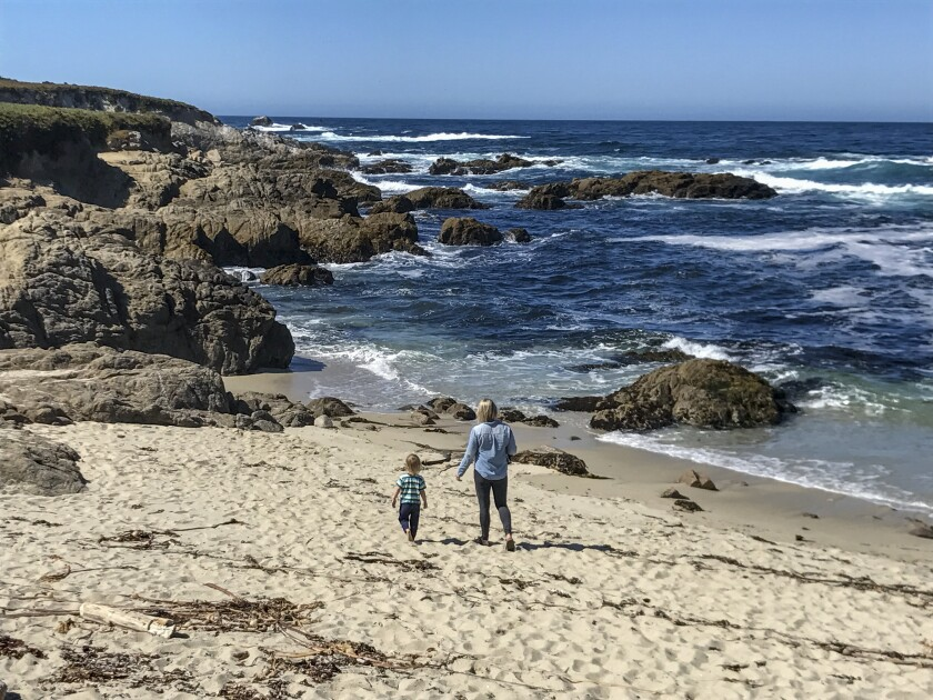 Your guide to Monterey: tide pools, tacos and more