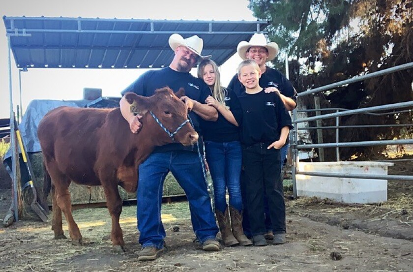 The entire Scepurek family is involved in raising this red angus calf; from left, Daniel, Olivia, Lucas and Megan.