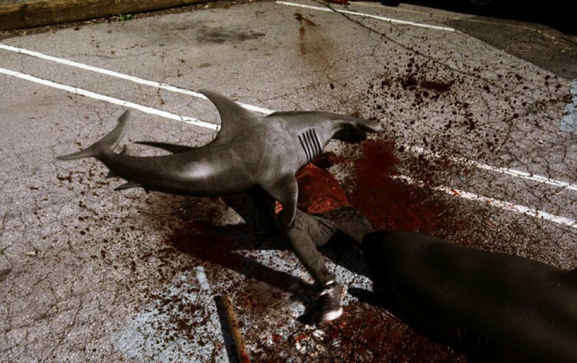 """Shark attacks man in the Syfy original film """"Sharknado."""""""