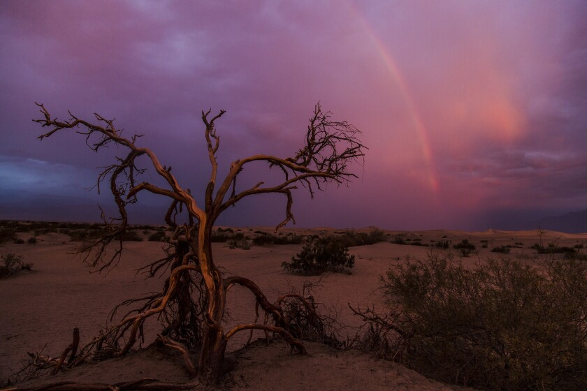 A rainbow forms during a rare stormy sunrise at Mesquite Flat Sand Dunes in Death Valley National Pa