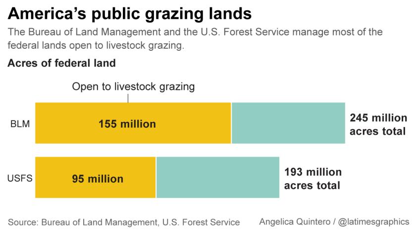 Grazing lands in America