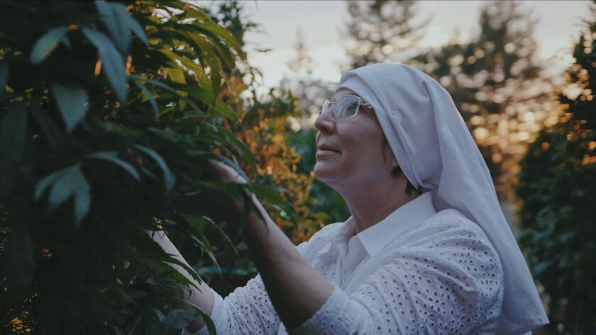 "Sister Kate in a scene from ""Breaking Habits."" Credit: Good Deed Entertainment"