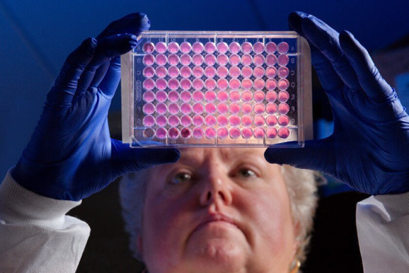 The CDC's Kitty Anderson holds a plate used for testing the ability of bacteria to grow in the presence of antibiotics. Drug-resistant CRE is on the rise in U.S. hospitals, according to the CDC.
