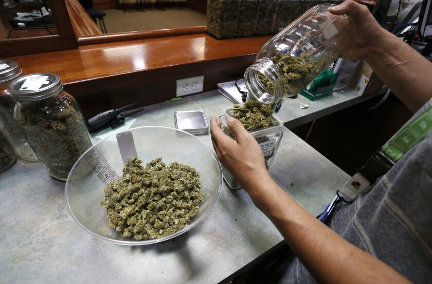 An employee places marijuana for sale into glass containers at a marijuana dispensary in Boulder, Colorado.