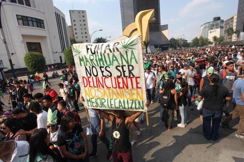 El día mundial de la marihuana se celebró hoy con discreción en México, con cerca de 500 personas concentradas en la capital del país a fin de acabar con el estigma sobre el consumo de la planta y la discriminación que sufren los fumadores. EFE/ARCHIVO