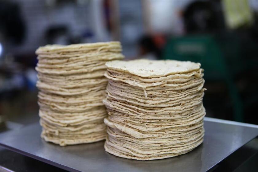 Vista general de tortillas, uno de los principales alimentos del mexicano. EFE/Archivo