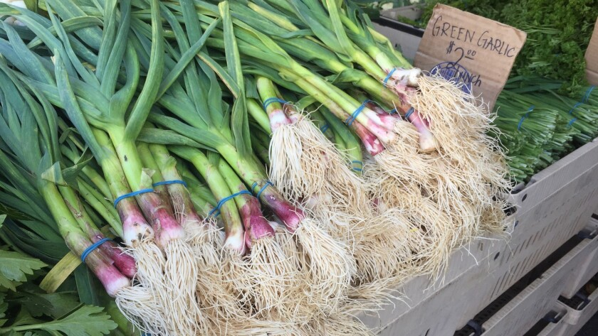 Bunches of green garlic spotted at the Thao Farms stand at the Hollywood Farmers Market this week.