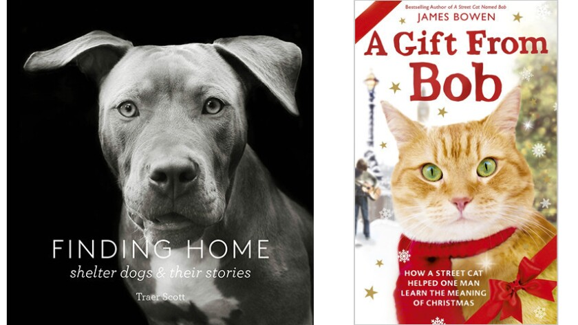 """""""Finding Home"""" and """"A Gift from Bob"""""""