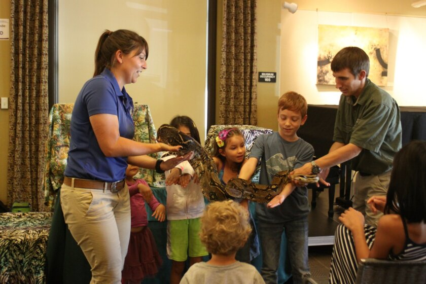 Some brave young animal lovers try to hold a boa constrictor snake with assistance from animal keepers Alanna Cappelli and Michael Donnellon, but it was heavier than they expected!