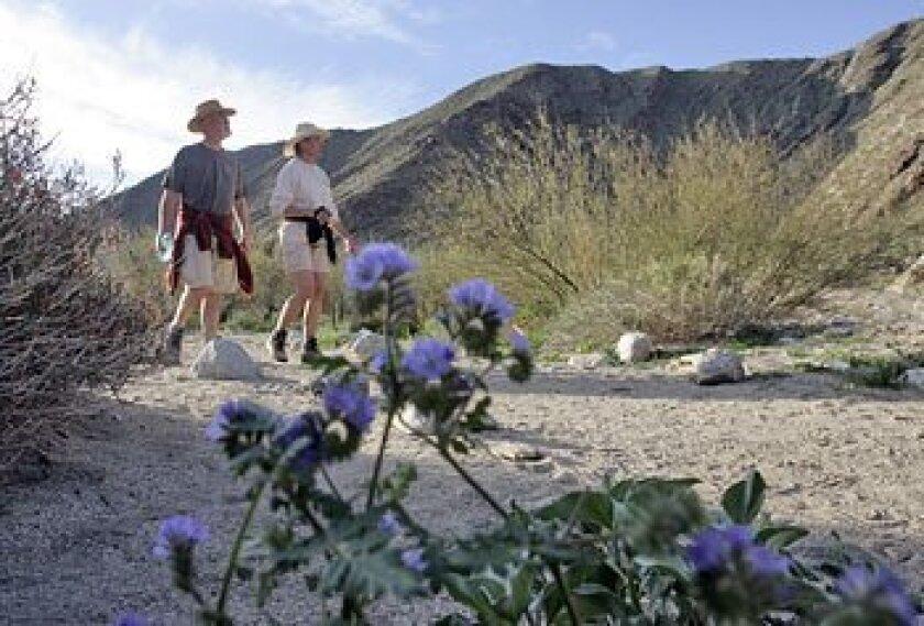 Anza-Borrego Desert State Park was on the original list of state parks targeted for closure. (John Gastaldo / Union-Tribune)