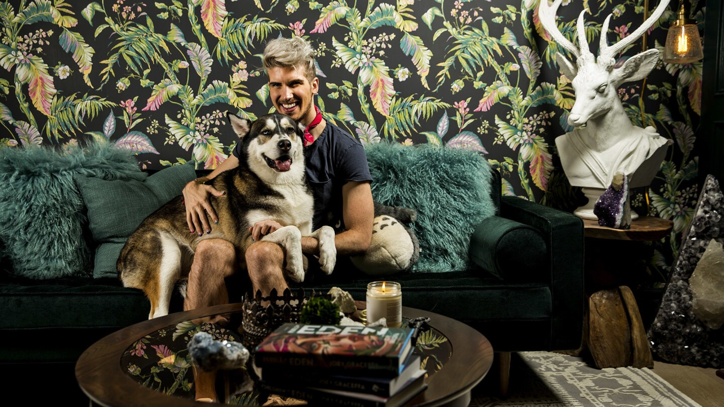 Surrounded by leafy wallpaper and woodsy touches, Joey Graceffa and his husky Wolf relax in what was once his home office.