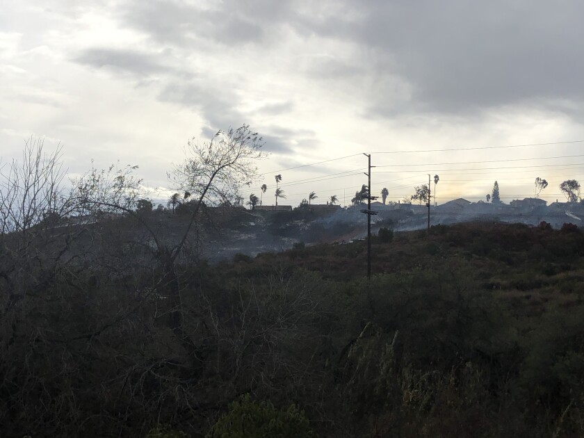 Firefighters put out a brush fire that threatened homes in Rancho San Diego Wednesday.