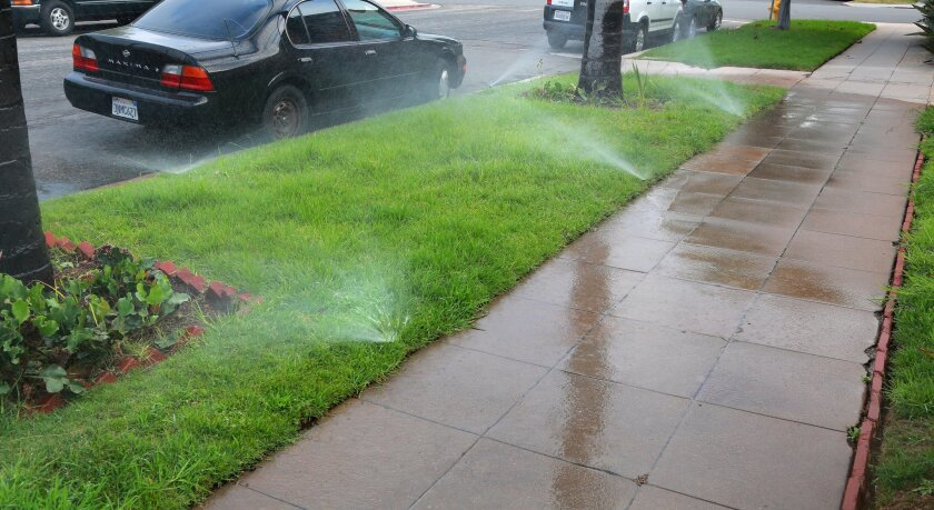 A water sprinkler system on a parking strip spills out onto the sidewalk and into the street in Banker's Hill. The Conservation Garden at Cuyamaca College is a popular spot for people looking to transform water-guzzling plants and lawns into a more conservative landscape. One of the displays specif