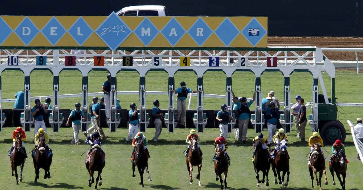 Horse racing newsletter: Del Mar concludes successful season
