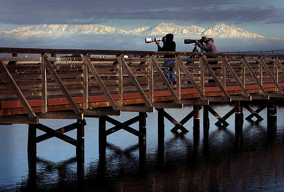Storm leaves a blanket of snow across Southland