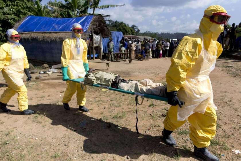 Guinea ebola