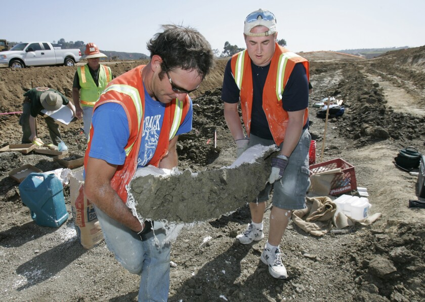Part of a mastodon tusk wrapped in plaster is carried from the Robertson Ranch fossil site in 2007
